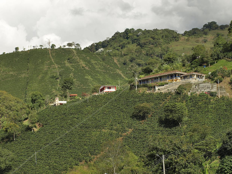 Hacienda San Alberto. All photos courtesy of Hacienda San Alberto.