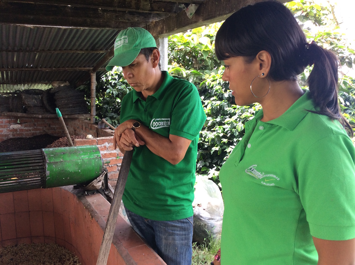 At the Coocentral Cooperative in Huila, Colombia. Image courtesy of Sustainable Harvest.