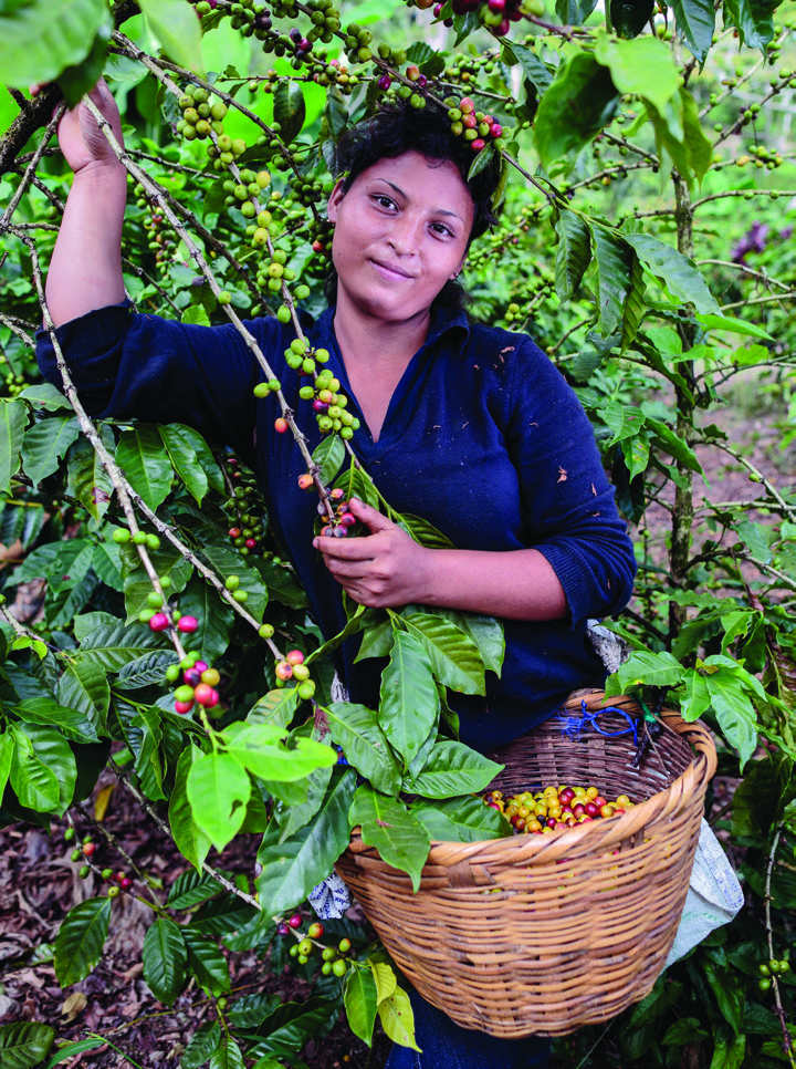 "Keila Antonia Manzanares López, 19, is a co ee picker at Finca La Revancha. ""I'm here because the season is going to be good,"" she says.""I heard the pay here is better than other places."""