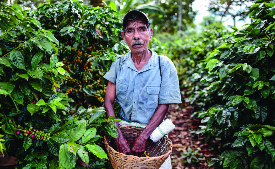 "Martiniano Hernández Álvarez, 70, another co ee picker at La Revancha, says, ""I have worked four years here and I am part of the Fair Trade Committee. I am happy because we receive a bonus for our work. Some of this bonus is invested in social works for the community."""