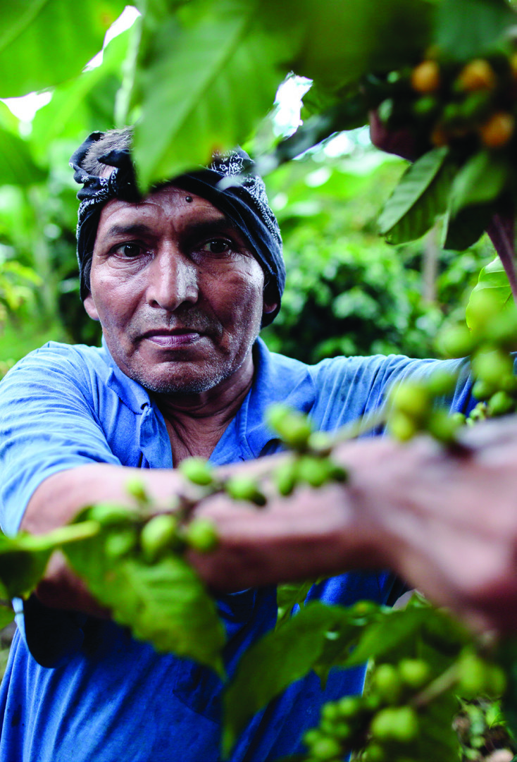 """Prudencio Vidal López Gutiérrez, 50, is a temporary coffee picker at La Revancha. """"I live nearby and I'm happy working here,"""" he says. """"They pay us a higher wage and give us food. In other places you don't get that."""""""