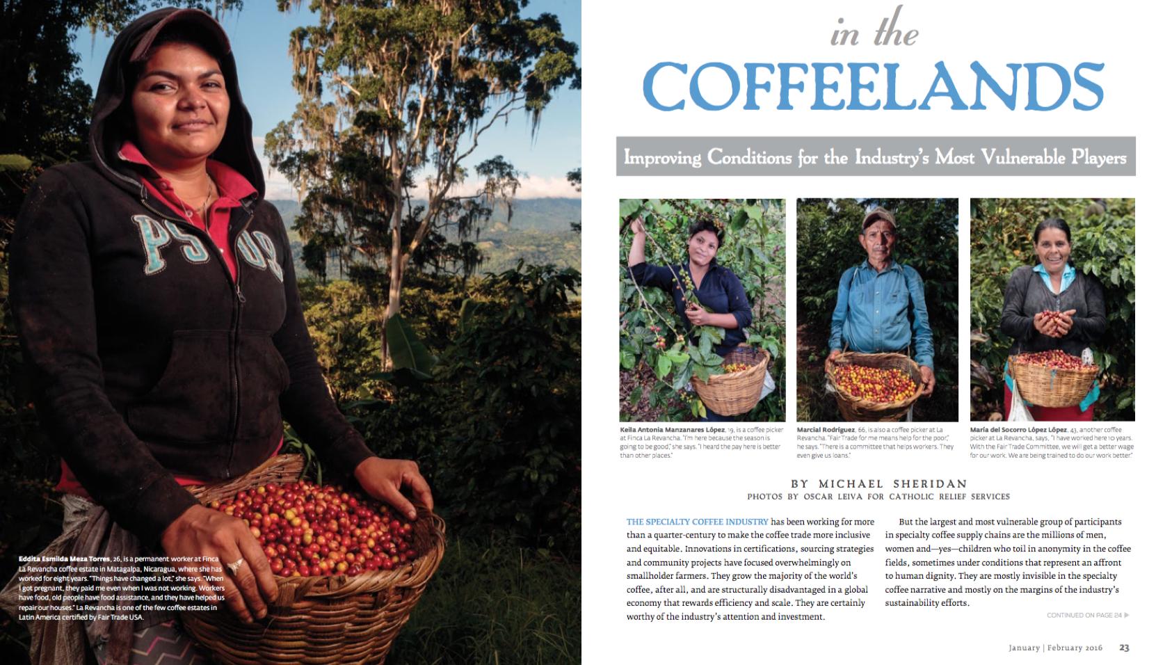 coffeelands roast