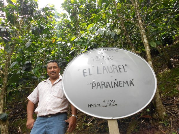 At $124.50 Per Pound, Honduras Coffee Breaks Cup of Excellence Record