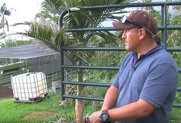 The Battle Continues for Longtime Kona Coffee Farmer Facing Deportation