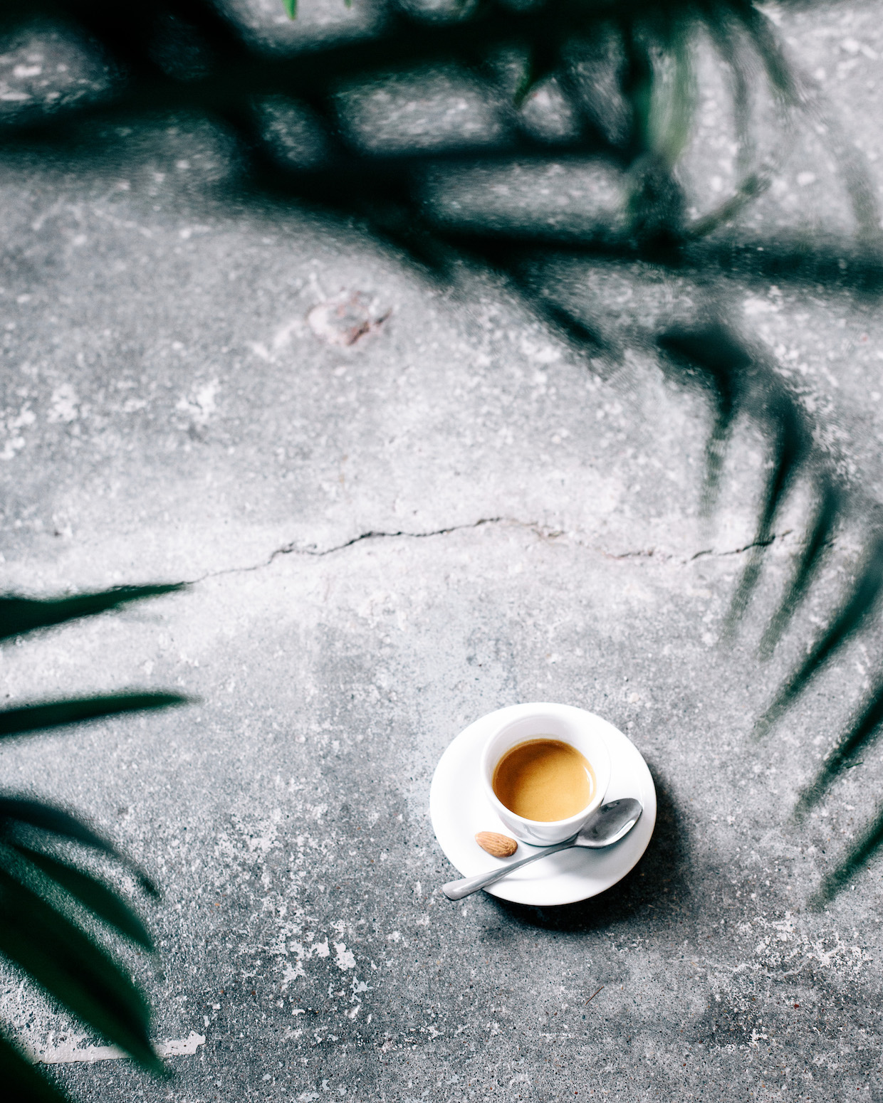 Horizon Line Coffee Des Moines