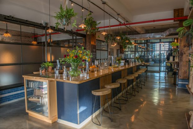 Nobletree Coffee Opens Tasting Room and Labs at Its Red Hook Roastery