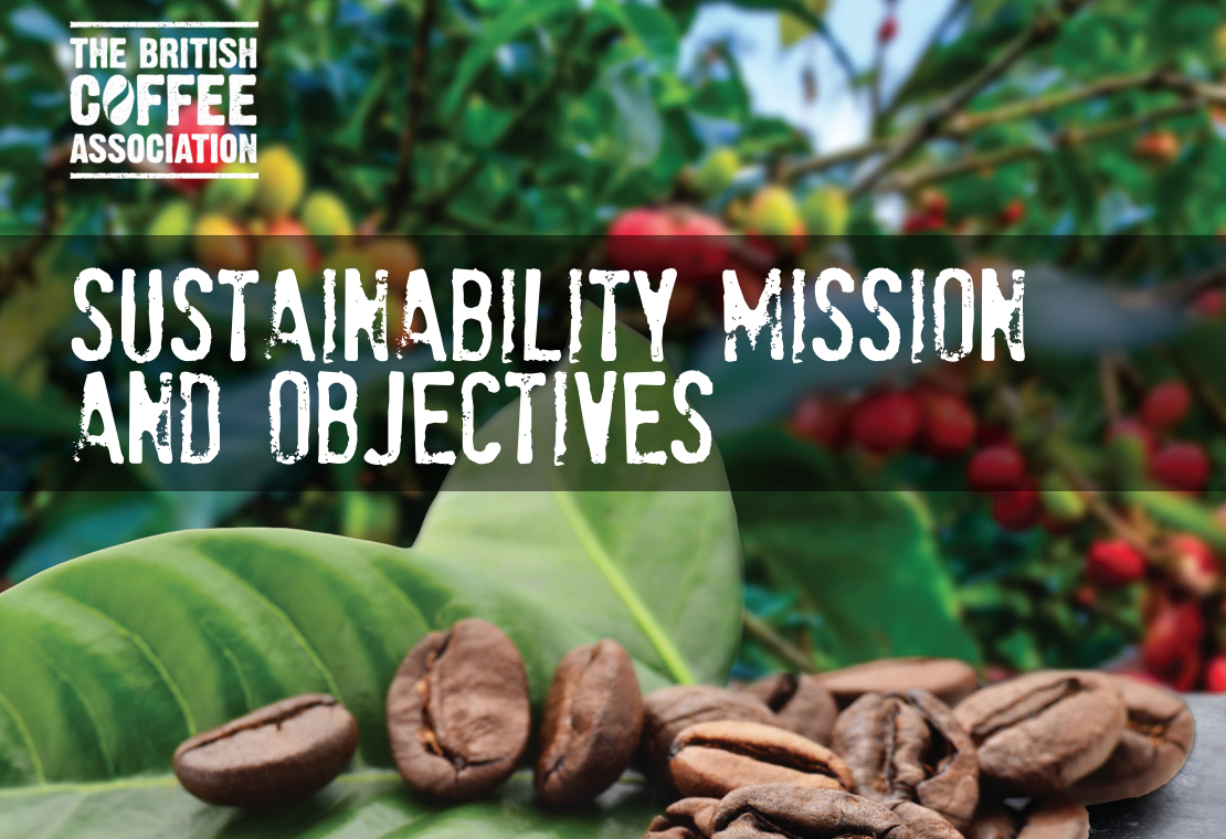 british coffee association sustainability