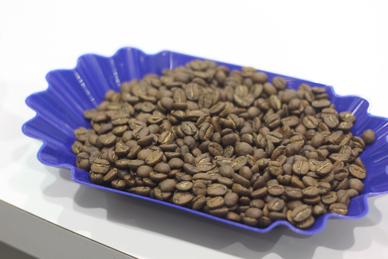 roasted coffee sample cupping