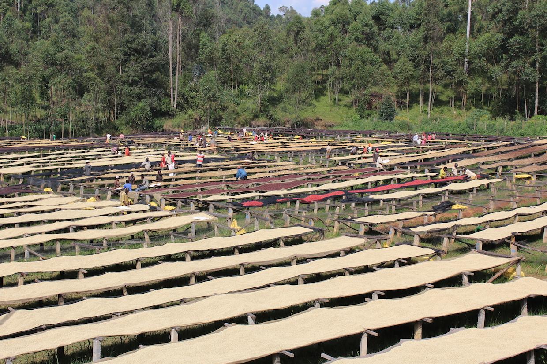 Kibingo burundi