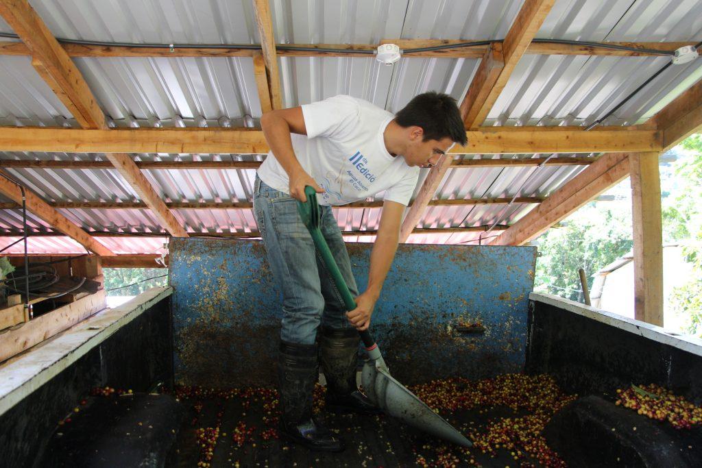 origin approach costa rica coffee