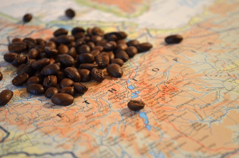 ethiopia coffee arabica