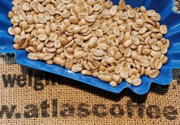 Seattle's Atlas Coffee Importers Joins the Neumann Kaffee Gruppe