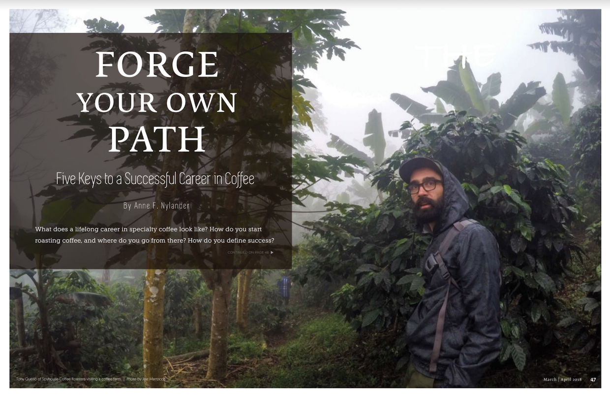 forge your own path five keys to a successful career in coffee