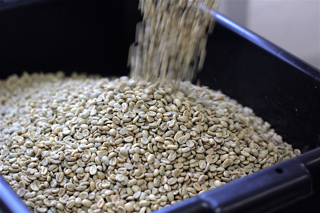 green coffee inventory orders for roasters