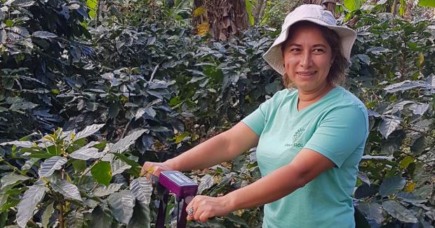 Coffee&Climate lanza una caja de herramientas gratuita para los productores que enfrentan al cambio climático.