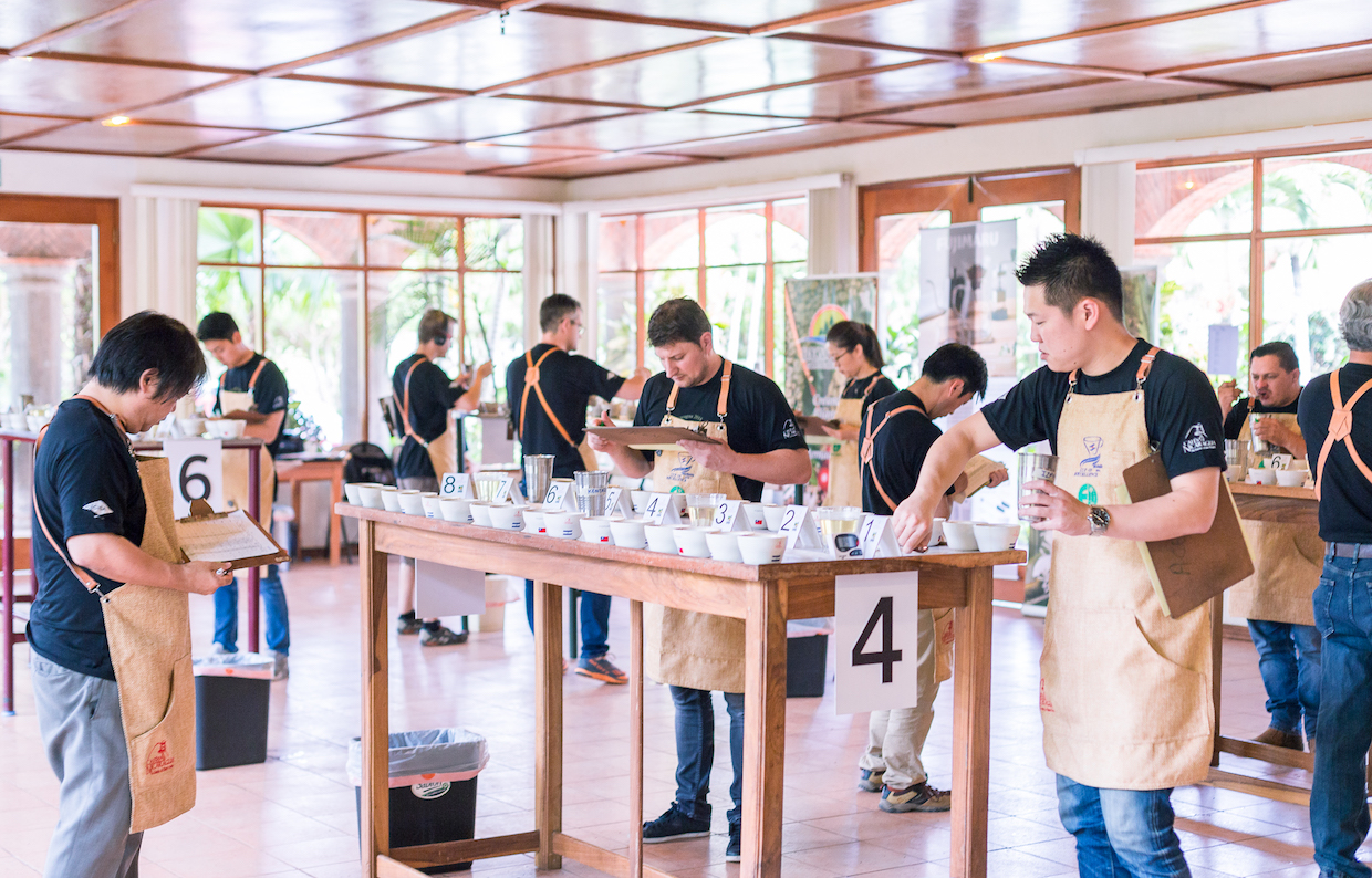 cup of excellence coffee judging cupping tasting