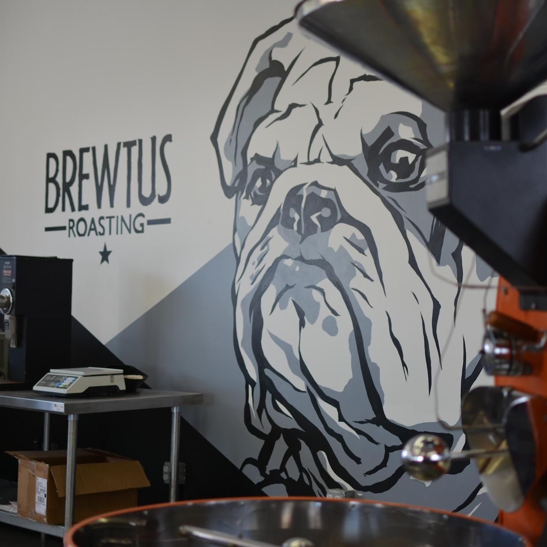 brewtus roasting tasting room coffee roastery delmar new york