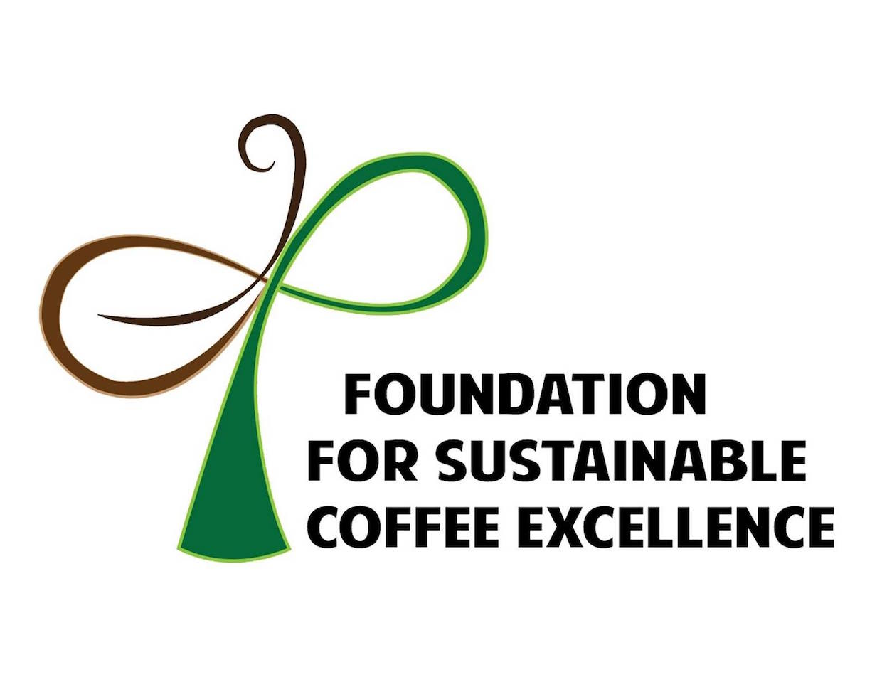 foundation for sustainable coffee excellence phillipines
