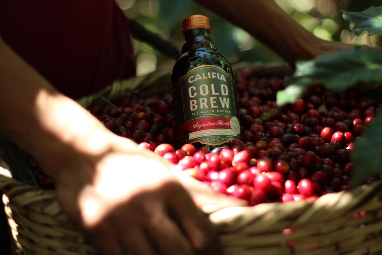 califia farms cold brew