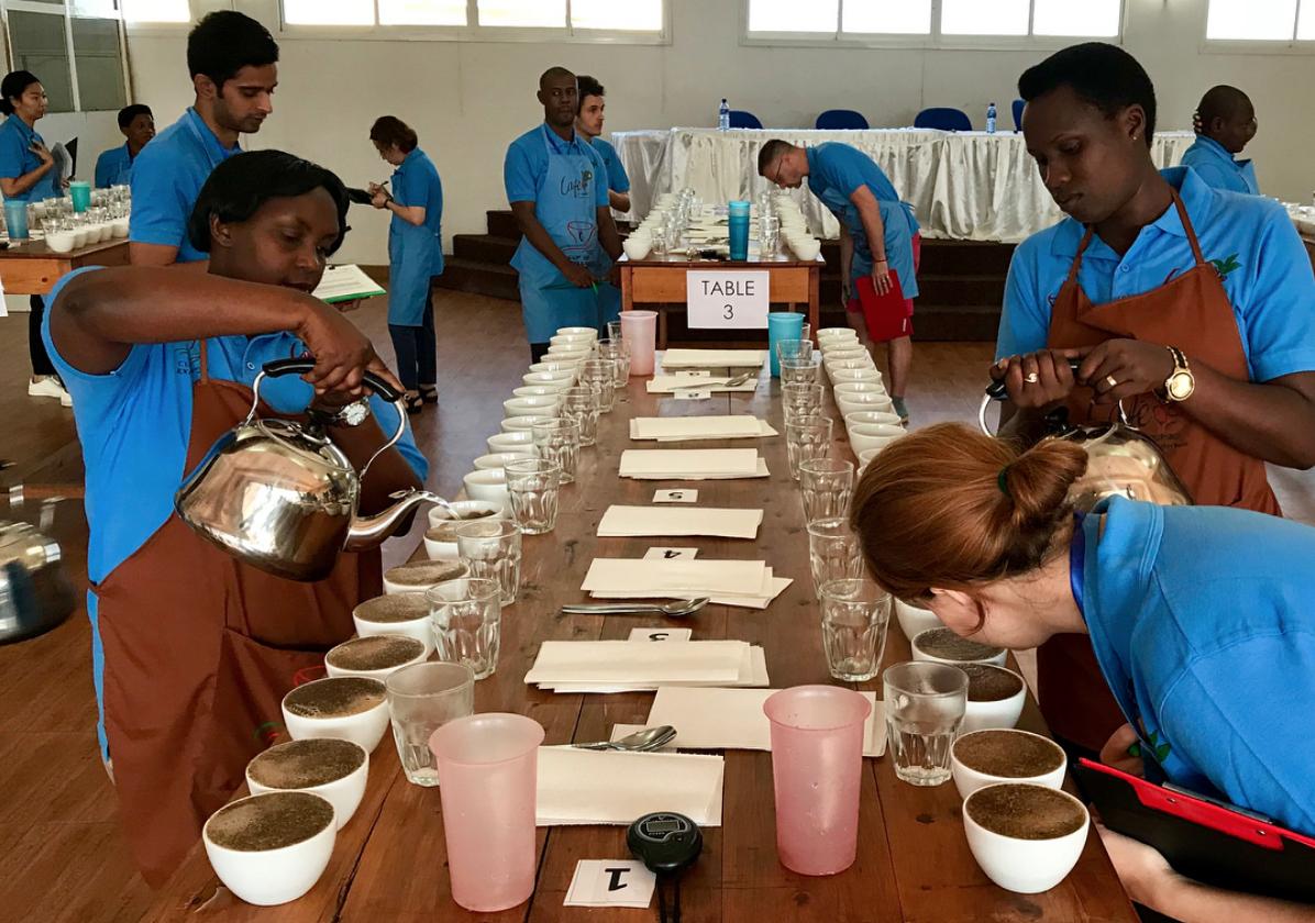Burundi coffee cupping