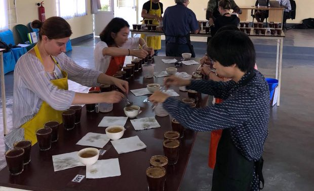 After Hiatus, Rwanda Cup of Excellence Returns with 340+ Coffee Submissions