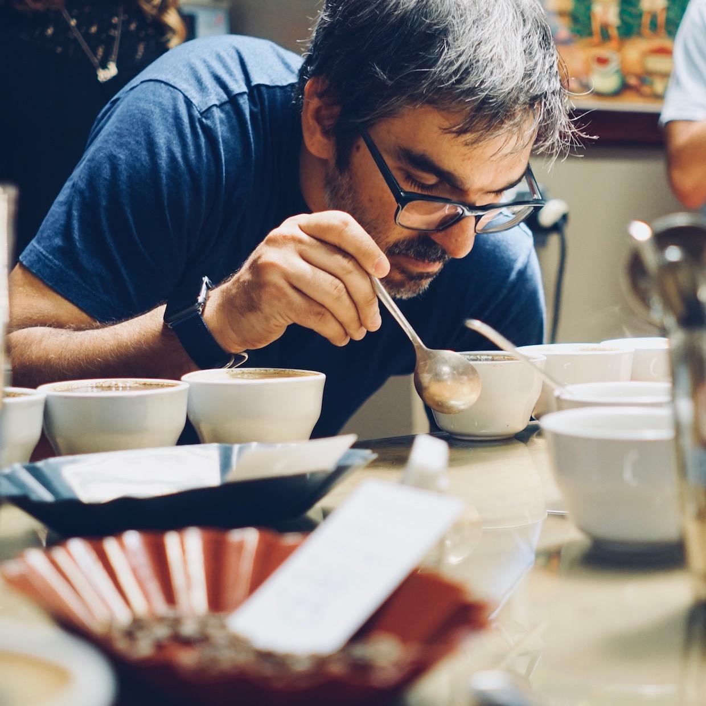 Mestiso coffee roasters brazil california