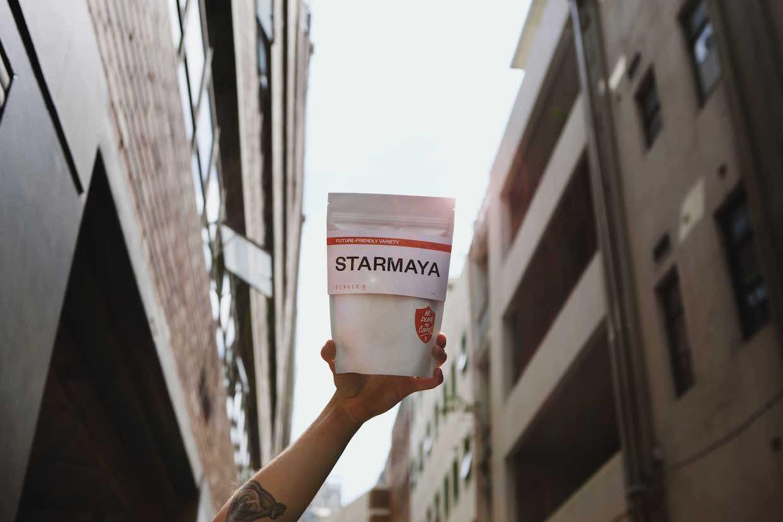 Single O Starmaya variety
