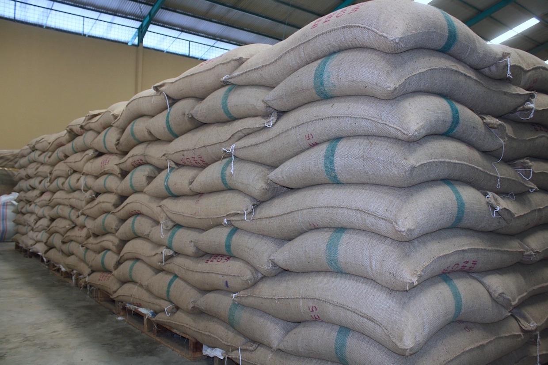 united states international coffee organization