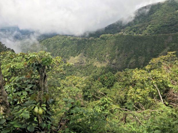 El ejemplo de Panamá