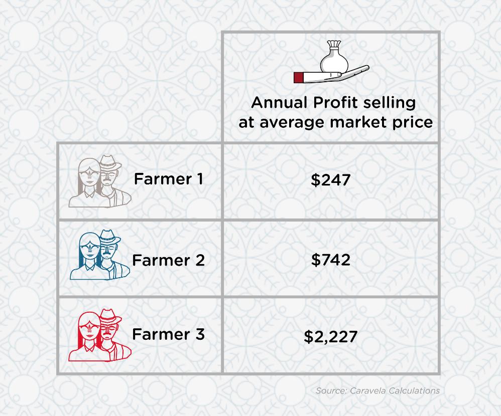 Farmer Annual Profit