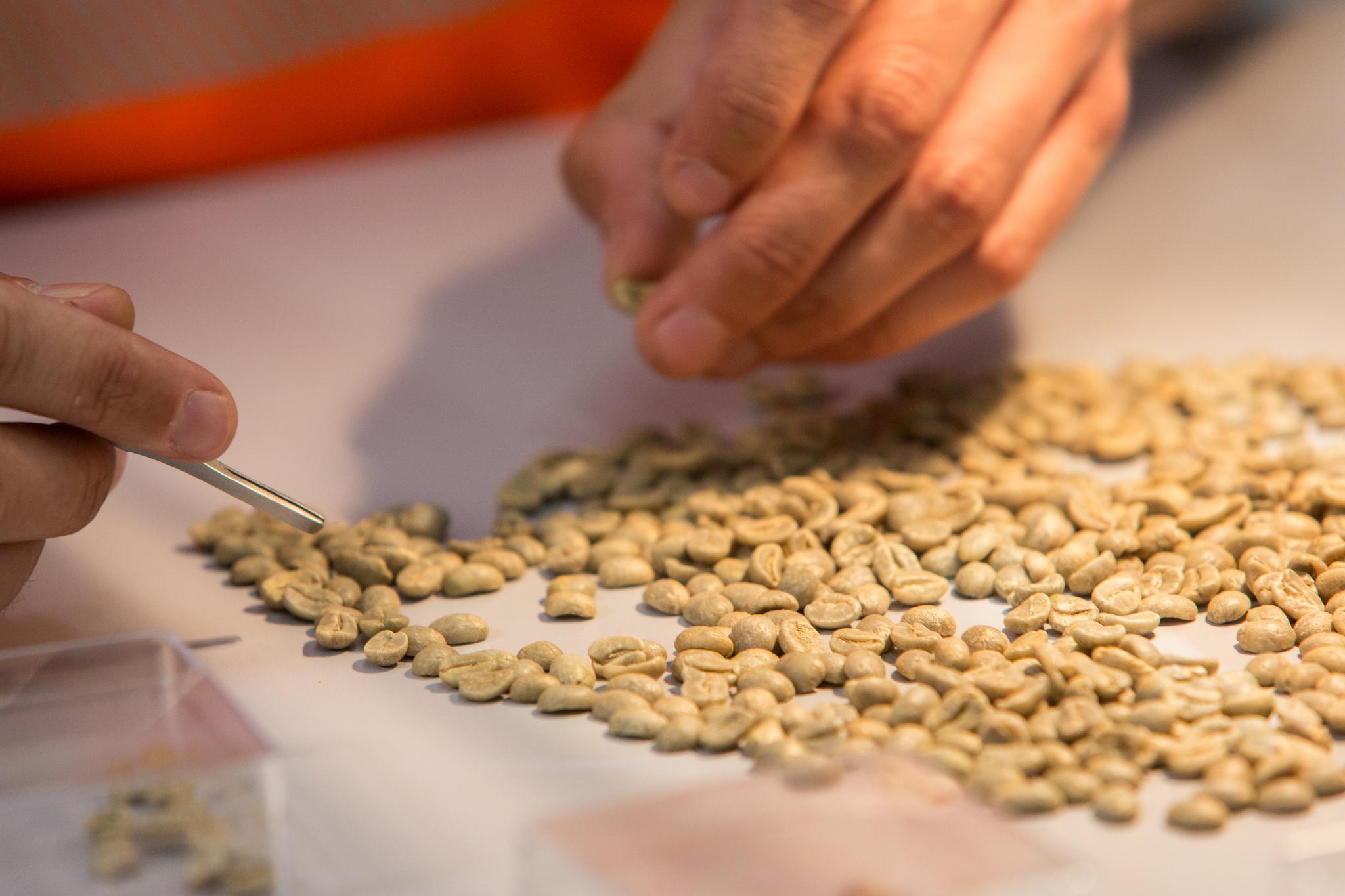 Nestle coffee training center