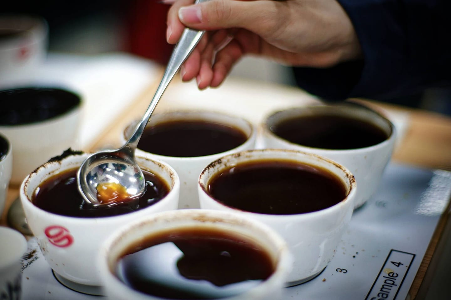 Yunnan coffee cupping