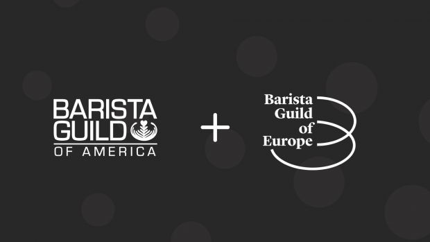 Barista Guilds of America and Europe Become One Big Barista Guild