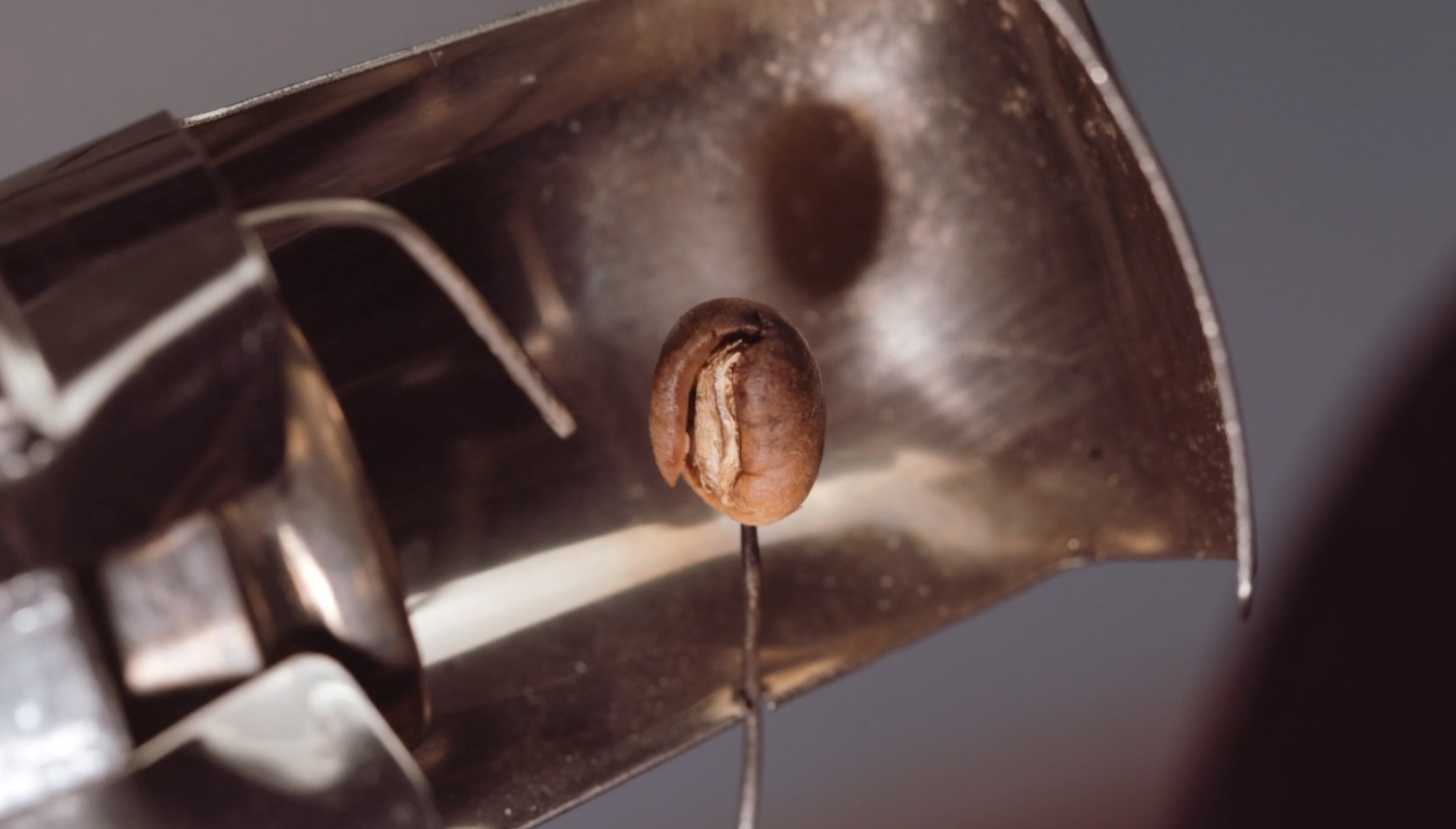 first_crack_coffee