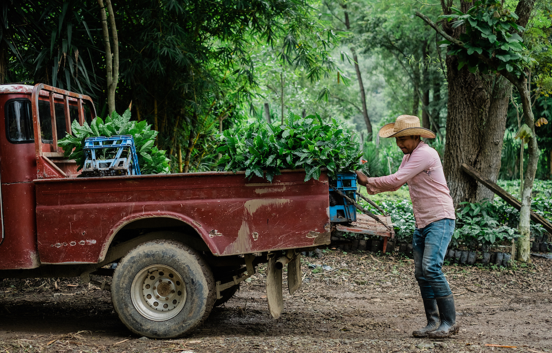 Coffee_Farmers_Central_America_2