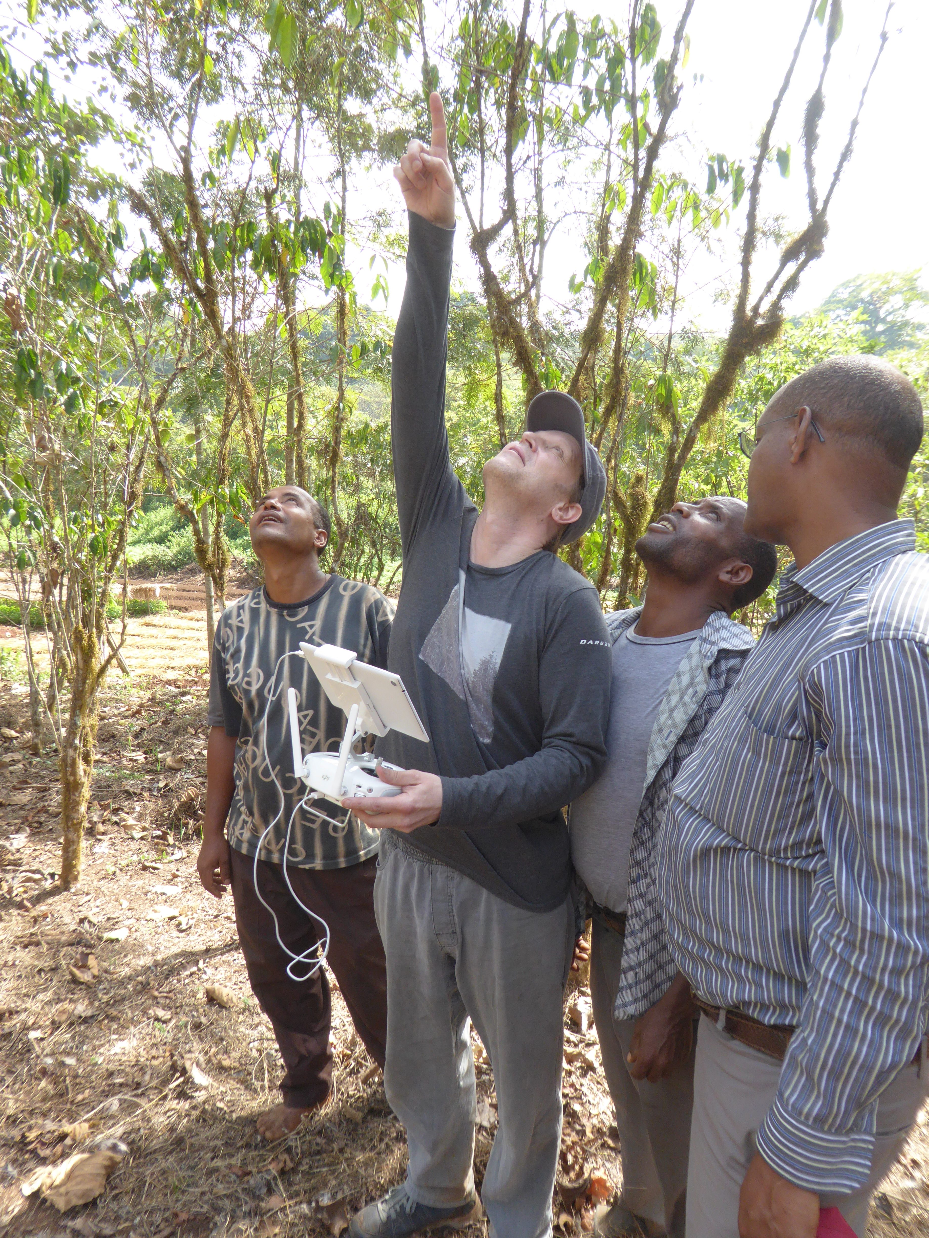 Kew scientist Dr Justin Moat, using drone technology to measure coffee production, south-west Ethiopia. Image RBG Kew.