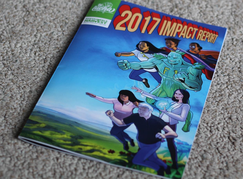 SH IMPACT REPORT