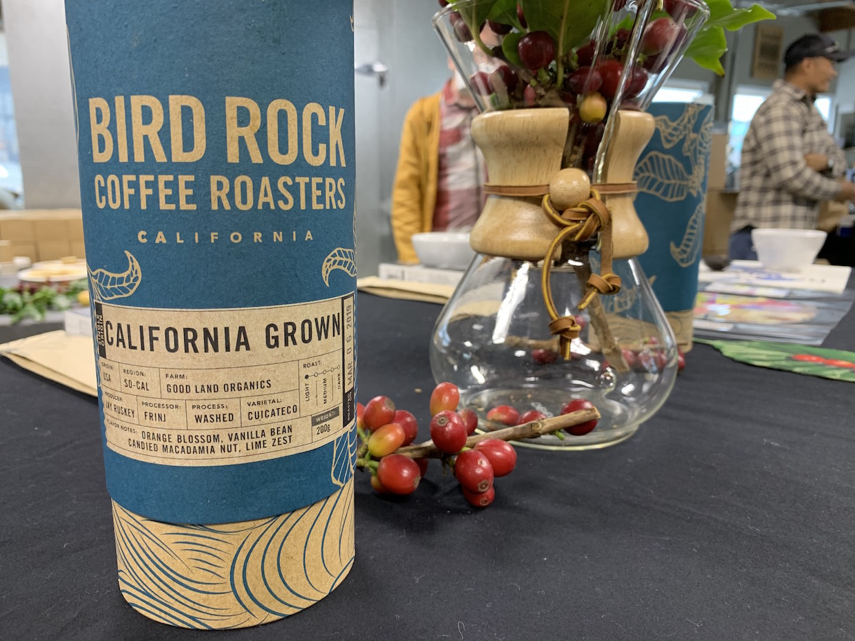 bird_rock_coffee