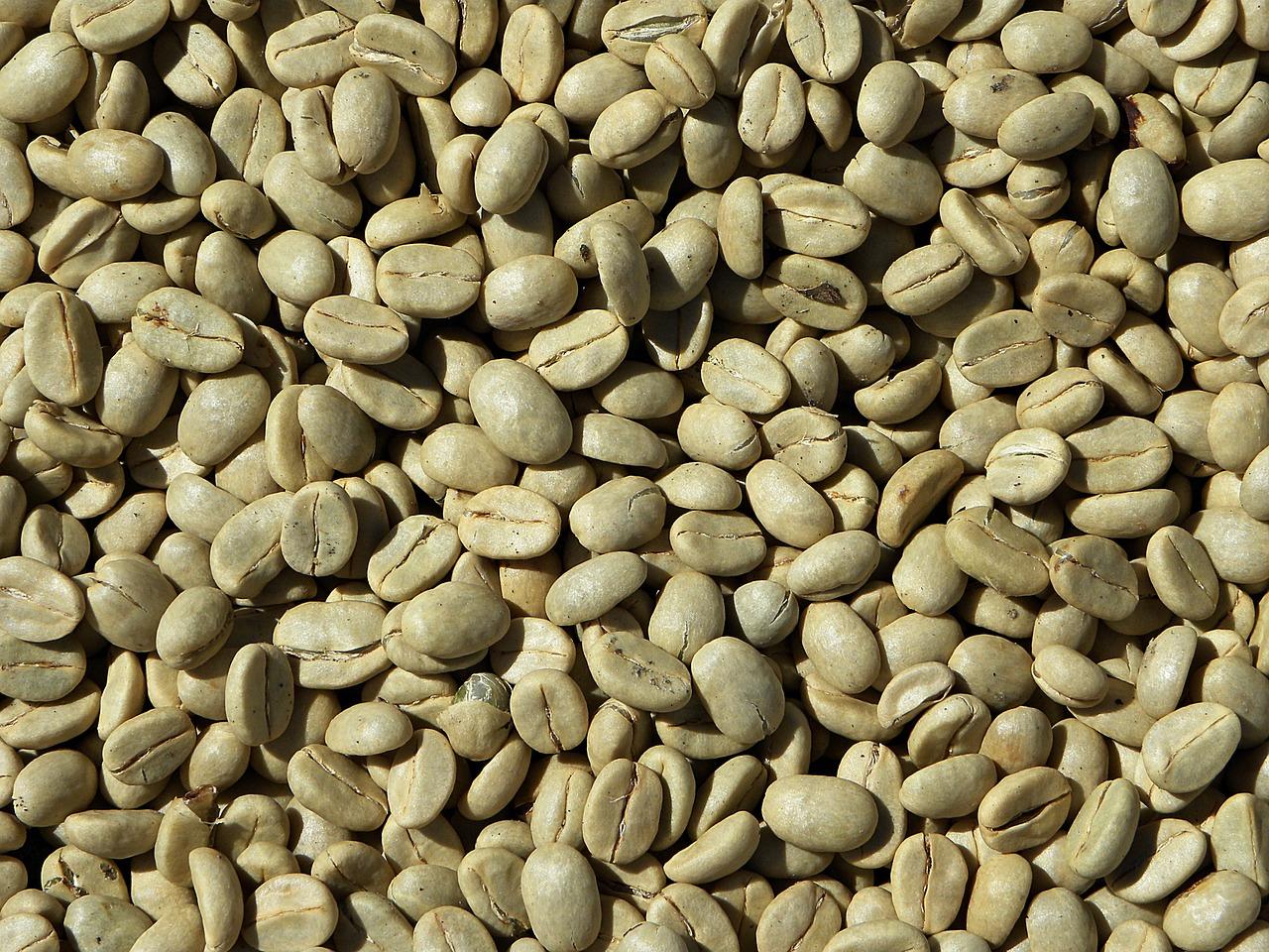 India green coffee