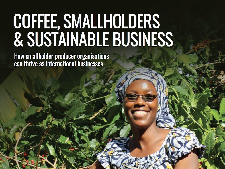 Twin report on smallholders