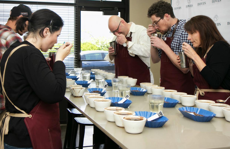 Novus coffee imports