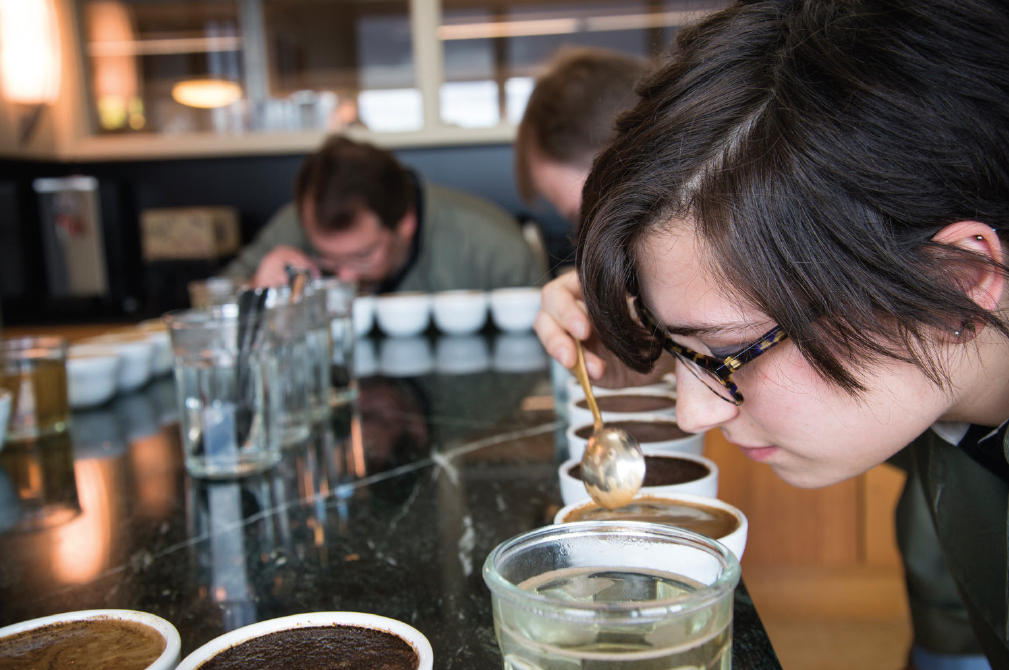 sensory analysis and coffee cupping
