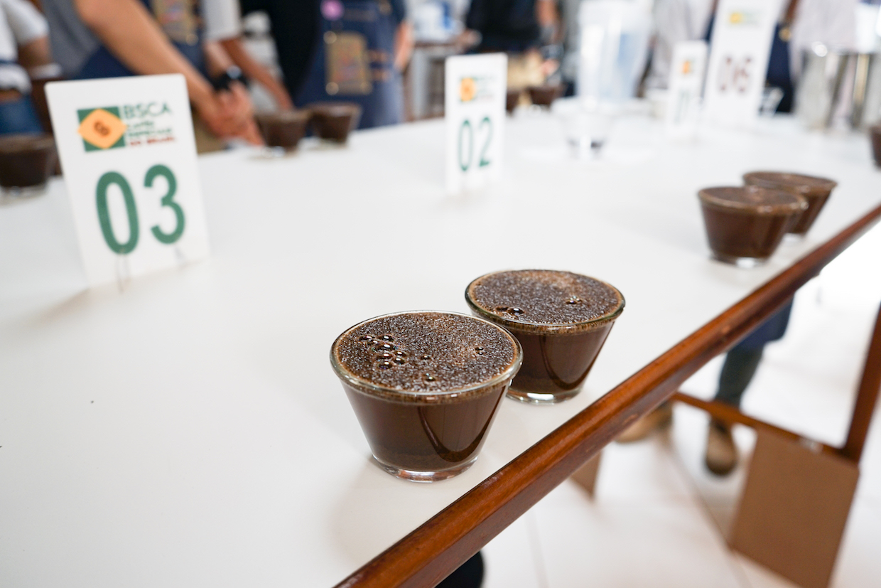 calibration cupping