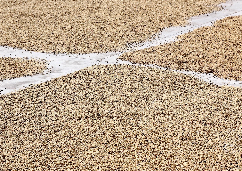 coffee crossroads