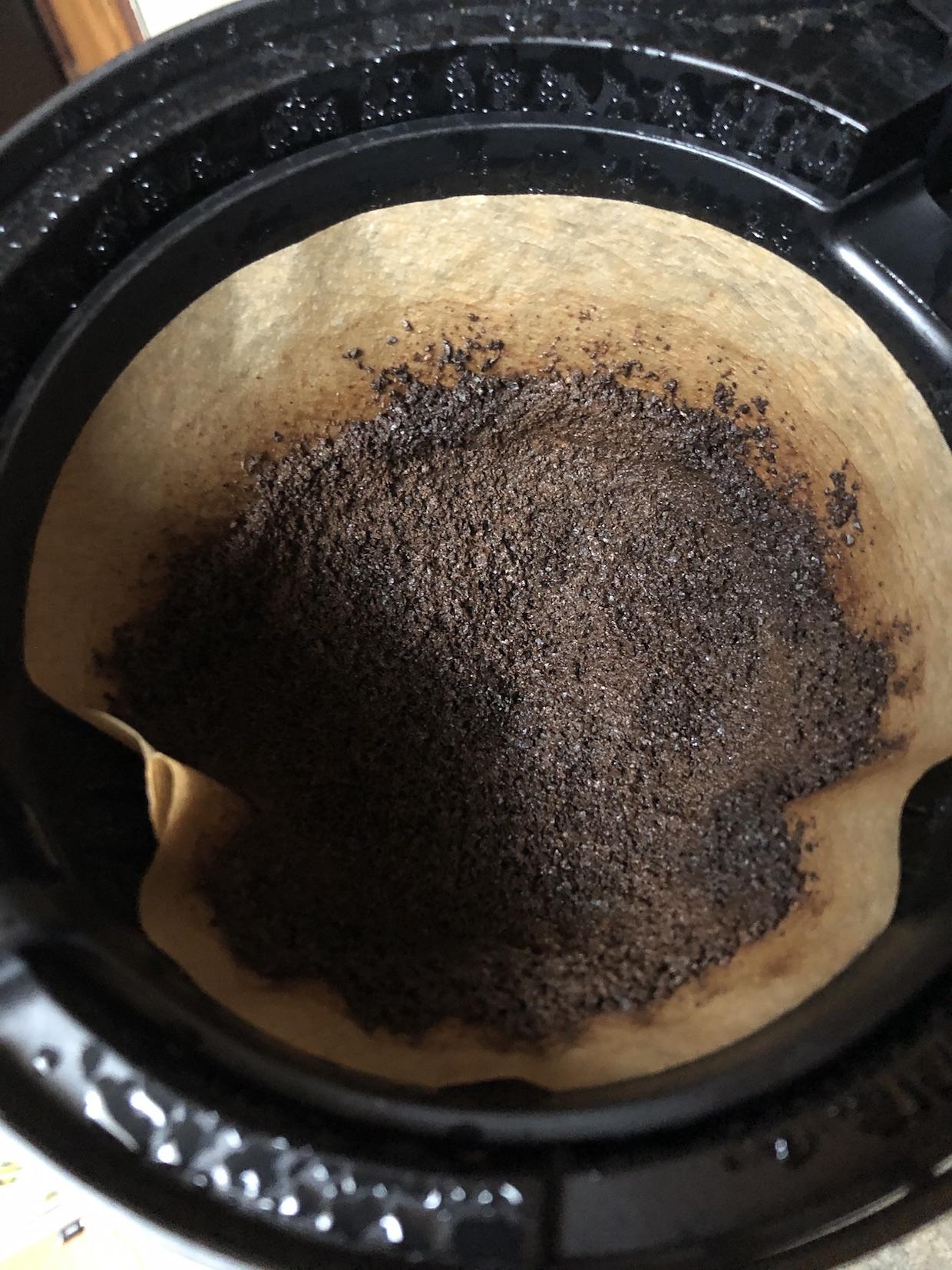 filter coffee brewer