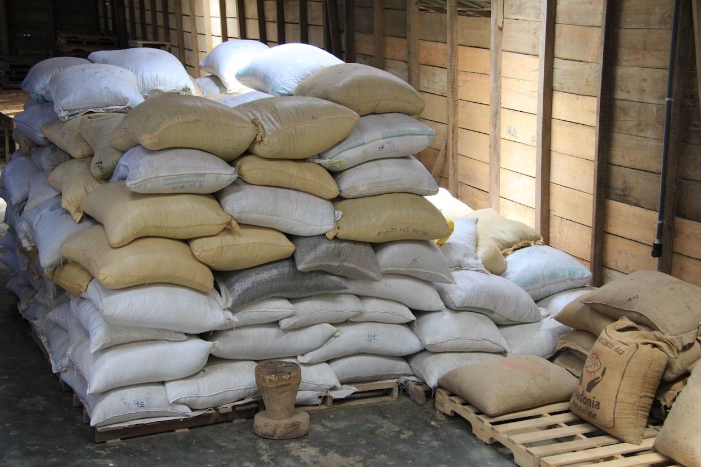 burlap-sacks-of-coffee-1556212830Rn6