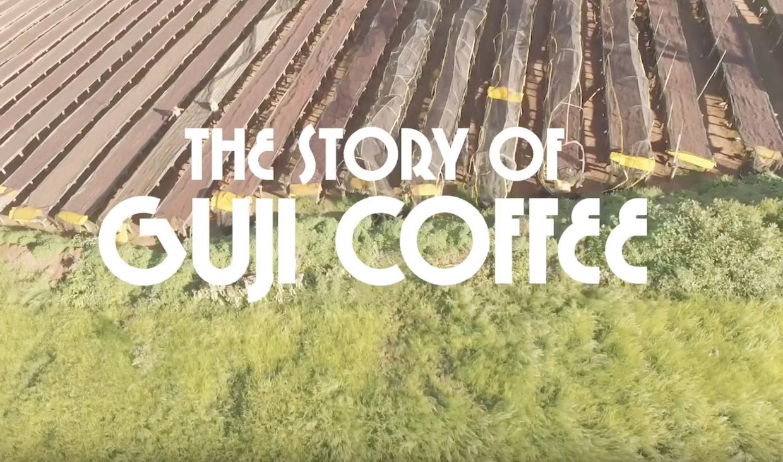 Guji Coffee Story