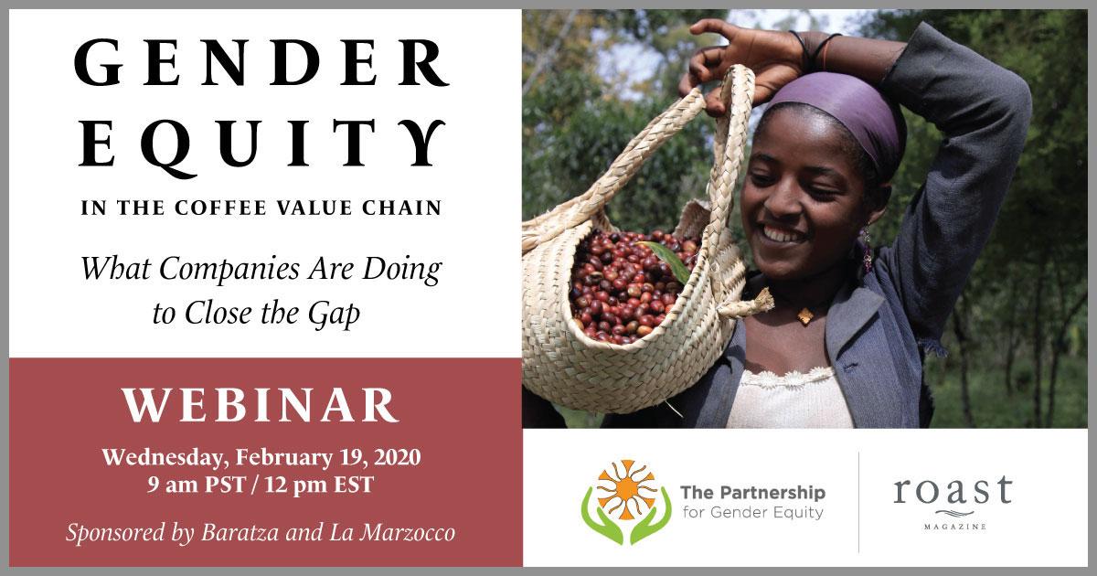 gender equity webinar info