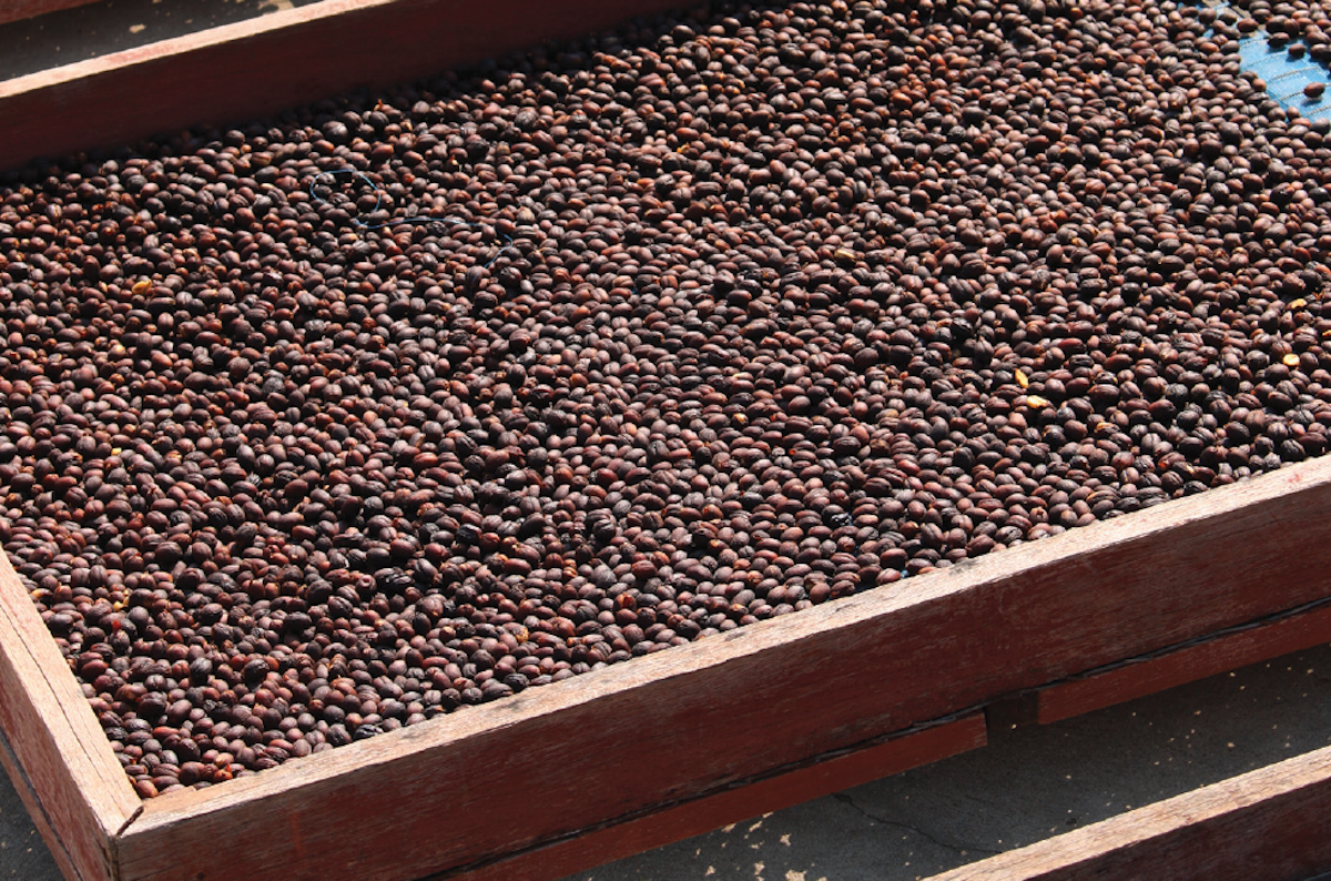 Natural-process coffee
