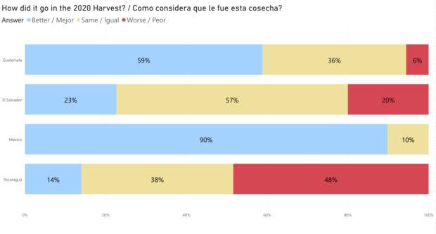 Caravela Survey 4